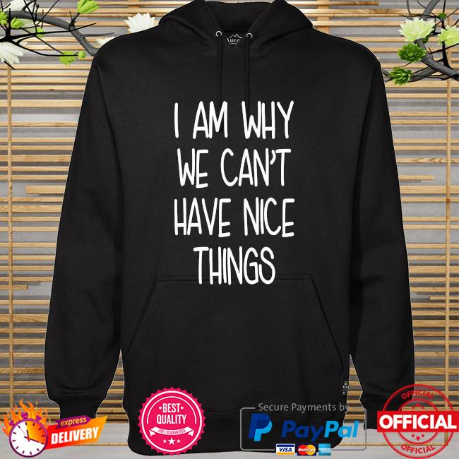 I'm why we can't have nice things hoodie